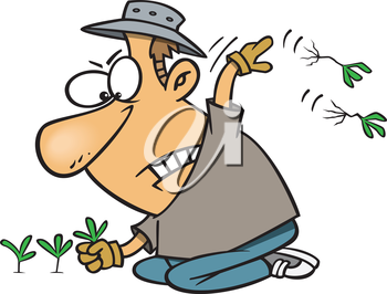 Royalty Free Clipart Image of a Man Weeding