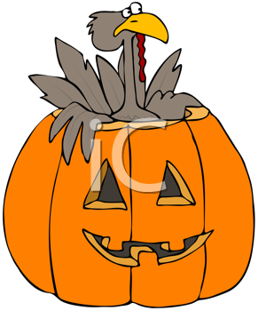 Royalty Free Clipart Image of a Turkey in a Jack-o-Lantern