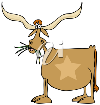 Royalty Free Clipart Image of a Texas Longhorn