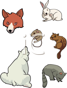 Royalty Free Clipart Image of a Collection of Animals