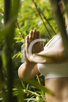 Royalty Free Photo of a Woman Standing in a Yoga Position in a Bamboo Forest in Maui, Hawaii