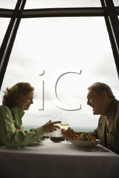 Royalty Free Photo of an Older Couple Dining in a Fancy Restaurant