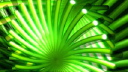 Royalty Free Video of a Rotating Abstract Tube Flower