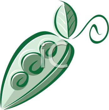 Royalty Free Clipart Image of a Pea Pod