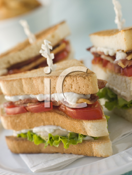 Royalty Free Photo of a Toasted Triple Decker Club Sandwich
