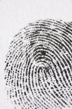 Royalty Free Photo of a Closeup of a Fingerprint