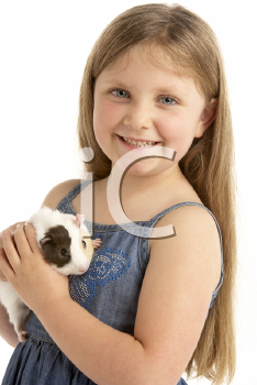 Royalty Free Photo of a Girl With a Guinea Pig