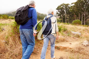 Senior couple walking together in a forest, close-up back view