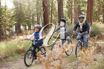 Asian couple and son cycling in a forest, side view