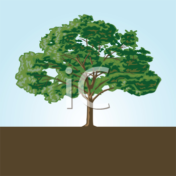 Royalty Free Clipart Image of a Tree and the Sky and the Ground