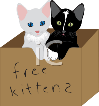 Royalty Free Clipart Image of a Box of Kittens