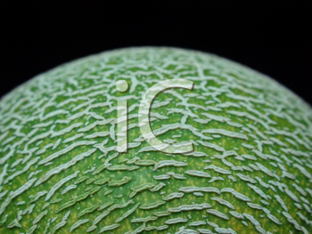 Royalty Free Photo of a Cantaloupe Skin