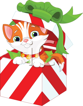 Cute kitten in a Christmas  gift box
