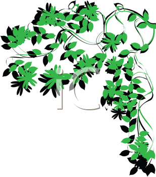 Royalty Free Clipart Image of Green Foliage