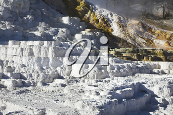 Royalty Free Photo of Travertine Formations in Yellowstone National Park