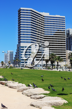 TEL AVIV, ISRAEL - MAY 2, 2014: Beautiful Tel Aviv promenade. On the green lawn in front of the hotel walks flock of pigeons