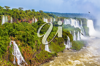 Border of Argentina, Brazil and Paraguay. The most full-flowing waterfalls Iguazu. Andean condors fly in the water dust. Concept of active and extreme tourism