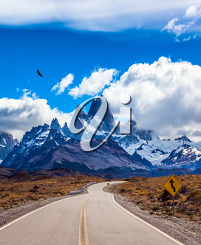 Highway to the majestic Mount Fitz Roy. Argentine Patagonia. Summer day in February. The concept of active and extreme tourism. The Andean condors hover over the prairie