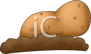 Royalty Free Clipart Image of a Potato on the Ground
