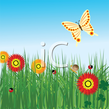 Spring background with flowers and butterfly