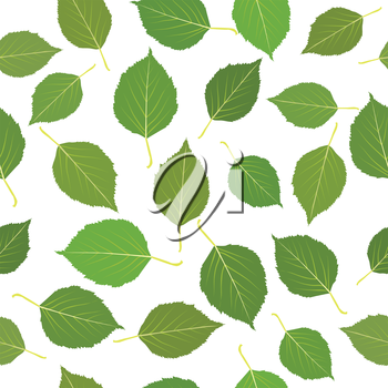 Seamless with green birch leaves