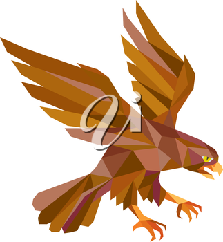 Low polygon style illustration of a peregrine falcon hawk eagle bird swooping viewed from the side set on isolated white background done in retro style.