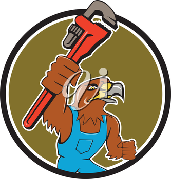 Illustration of a hawk plumber holding wrench spanner set inside circle on isolated background done in cartoon style.
