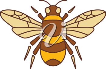 Icon style illustration of Bumble Bee Bumblebee  member of genus Bombus, part of Apidae with open wing on isolated background.