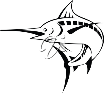 Retro style illustration of an Atlantic blue marlin, a species of marlin endemic to the Atlantic Ocean, swimming and jumping up done in black and white on isolated background.