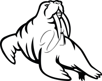 Black and white mascot illustration of a male mustached and long-tusked Atlantic or Pacific walrus, a large flippered marine mammal  viewed from side on isolated background in retro style.