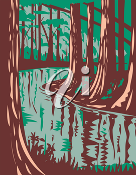 WPA poster art of Cedar Creek, a blackwater stream that runs through the Congaree National Park in central South Carolina, United States in works project administration or federal art project style.