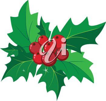 illustration of a decoration with holly
