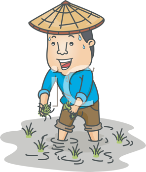 Royalty Free Clipart Image of a Farmer in a Rice Field
