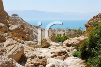 Royalty Free Photo of the Dead Sea at the Ein Gedi Nature Reserve
