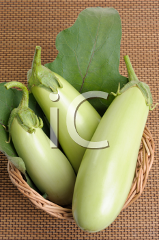 Royalty Free Photo of a Eggplants