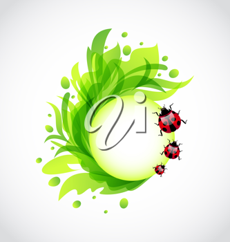 Illustration eco floral transparent background with ladybugs - vector