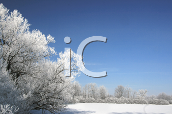 Royalty Free Photo of a Winter Scene