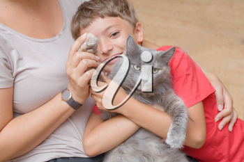 mother and son with gray cat having fun indoors
