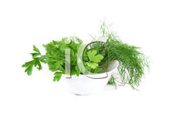 dill and parsley at plate isolated on a white background