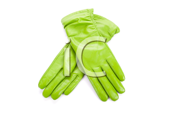 Green modern female leather gloves isolated on a white
