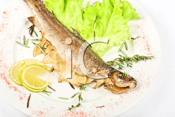 Royalty Free Photo of Baked Trout