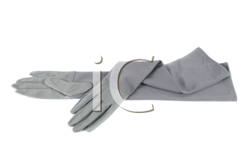 gray modern female leather gloves isolated on a white