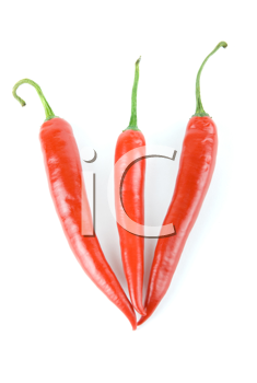 red hot chili peppers isolated on white