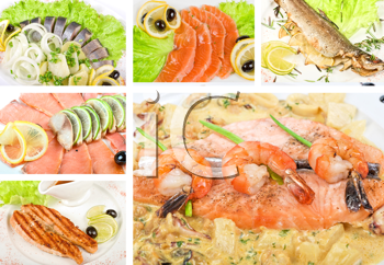 Royalty Free Photo of a Set of Different Fish Dishes