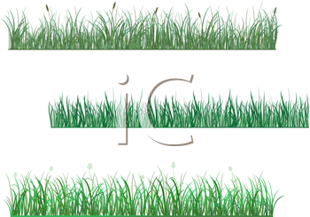 Royalty Free Clipart Image of Grass
