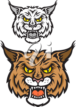 Head of lynx or bobcat for sport team mascot design with angry emotions