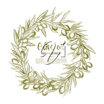 Olive branch wreath sketch label for natural organic olive oil. Branches of olive tree with fruit and leaf arranged into a round frame with copy space in center. Healthy food themes design