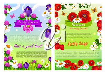 Summer is coming posters set for summertime holiday greeting of blooming flowers, poppy or clover petals, daisy, roses or viola bunch in green grass, butterfly on jasmine blossoms and flourish ribbon