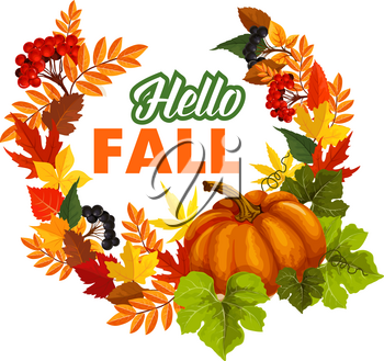 Autumn seasonal greeting card of Hello Fall quote and pumpkin or rowan berry harvest on foliage wreath. Vector poplar, aspen or birch and chestnut autumn leaf, oak acorn for fall holiday design