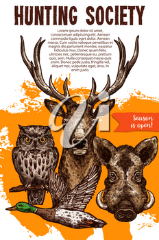 Hunting sport banner with wild animal and bird. Deer, duck, boar and owl sketches for announcement poster of hunting season opening and hunter club flyer design